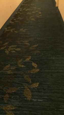 Candlewood Suites - Nanuet: I like the carpet design.