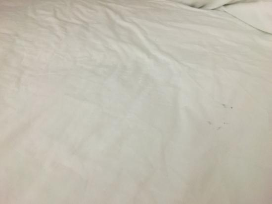 Quality Inn Oxford: photo0.jpg