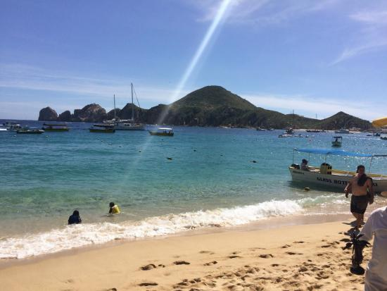 Beach Life Picture Of Sandos Finisterra Los Cabos Cabo San Lucas