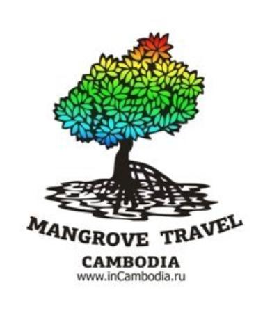 Mangrove Travel