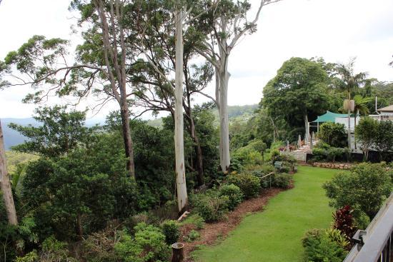 Mount Tamborine, Australia: View