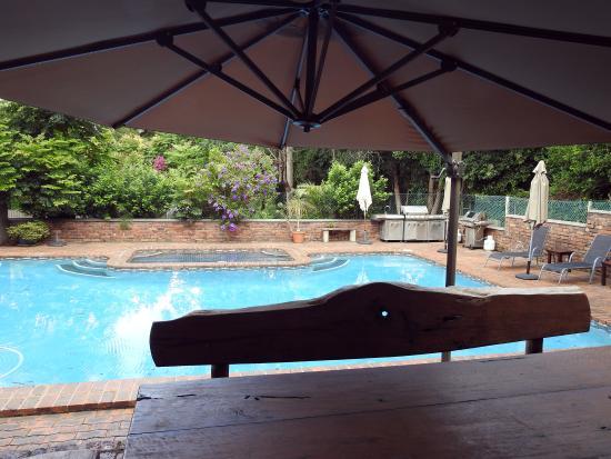 Mt Tamborine Motel: Swimming pool