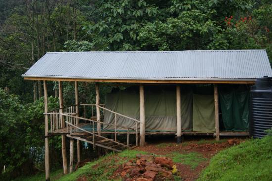 Gorilla Conservation Camp: Adjacent banda.