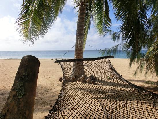 Uoleva Island, ตองกา: Look from the resort