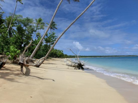 Uoleva Island รูปภาพ