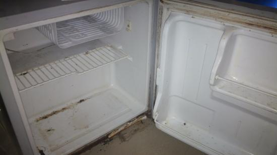Hotel Kanha Grand: fridge in the room