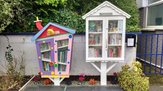 Enfield, Ireland: Little Free Library