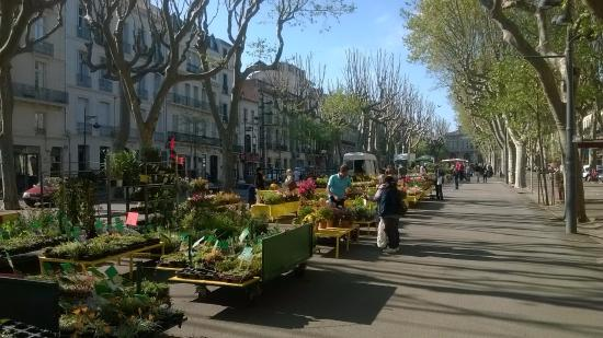 Hotel des Poetes : The Avenue on Market Day ( 2 mins from Hotel)