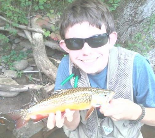 Elk Springs Resort: Tiger trout
