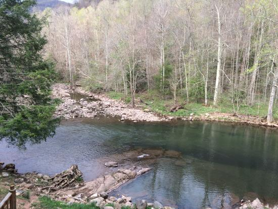 Elk Springs Resort: Elk river at the spring head