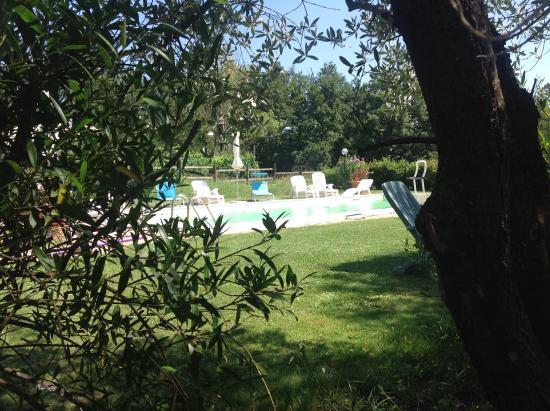 Fauglia, Italien: La piscina