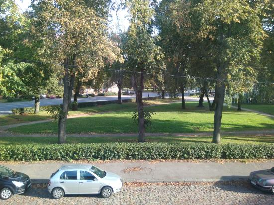 Gogol Park Hostel: View from room to Gogol park and parked cars on street