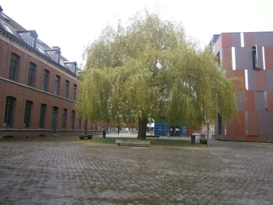 Tourcoing, Francia: La cour