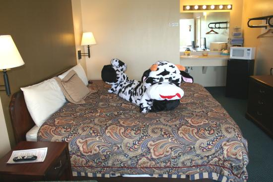 Town & Country Motel: Our King room