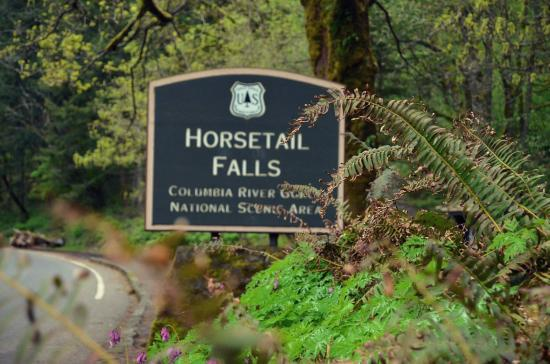 Hood River, OR: Horsetail Falls- Columbia River Gorge