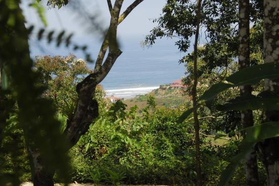 Samai Ocean View Lodge Spa: Ocean View