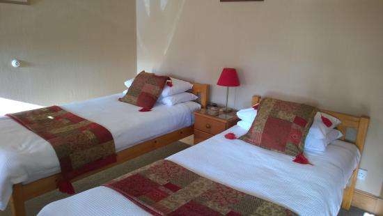 Rossmount Guest House: Twin room