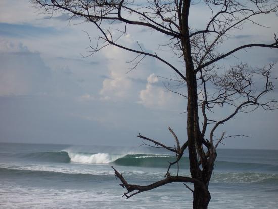 Surf Vista Villas: Santa Teresa