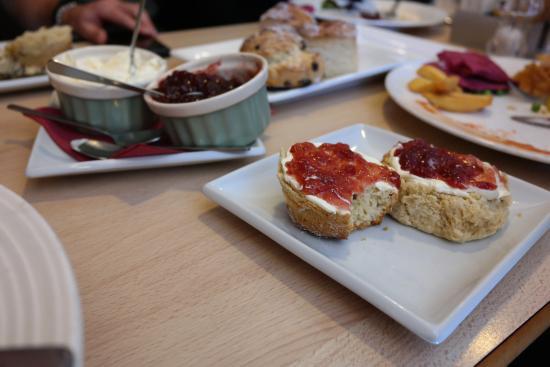 Tavistock, UK: Cream Tea - delish