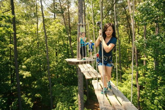 Go Ape Treetop Adventure Course