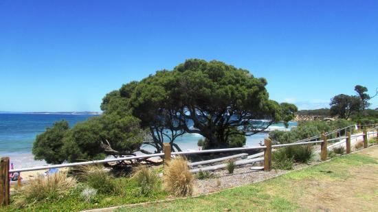 Queenscliff, Australia: Beautiful views and beach