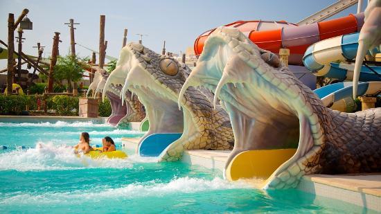 Emirato de Abu Dabi, Emiratos Árabes Unidos: sensacional.
