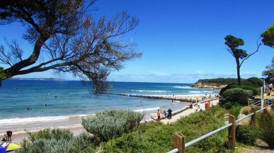 Queenscliff, Australia: Good swiming and sand