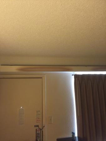 Red Roof Inn Tinton Falls-Jersey Shore: photo2.jpg