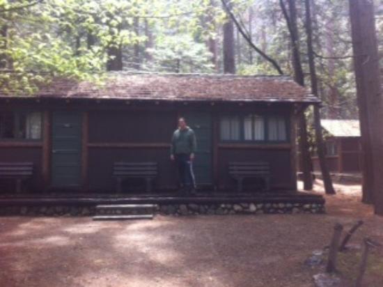 Yosemite cabins inside the park yosemite national park for Cabins in yosemite