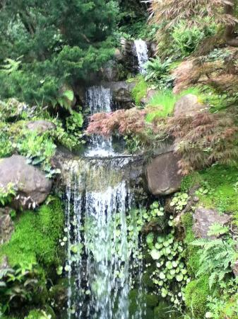 Saratoga, CA: Soothing waterfall
