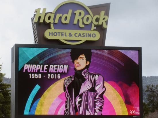 tribute to purple reign hard rock hotel and casino stateline rh tripadvisor com