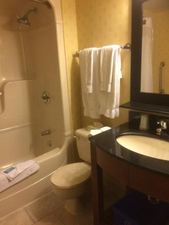 Holiday Inn Express & Suites London Downtown: photo1.jpg