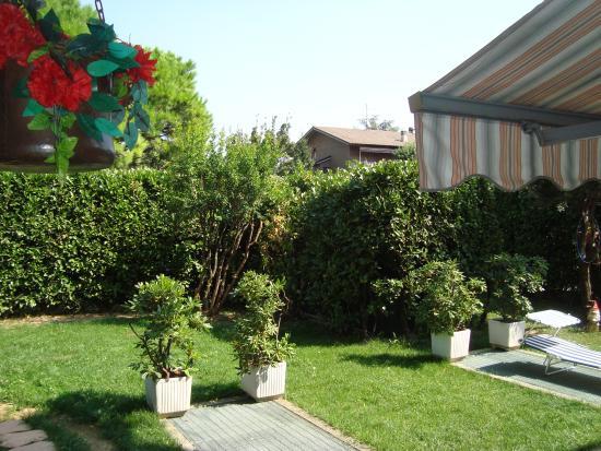 The Village B&B: Front garden