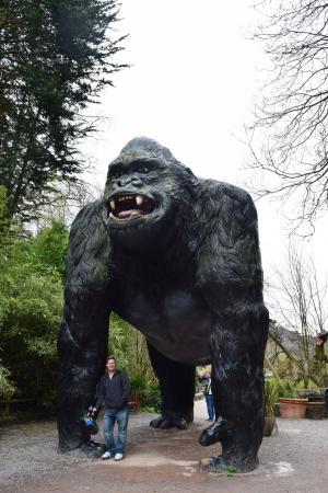 Wookey Hole, UK: King Kong