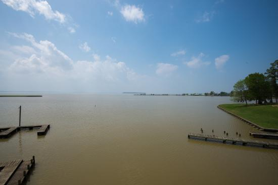 View of Lake Livingston from the Tower