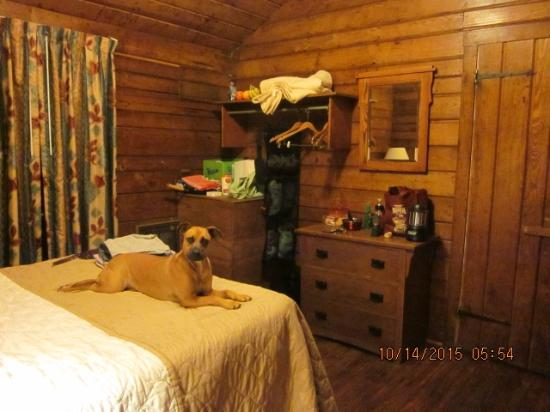 Lewis Mountain Cabins Updated 2019 Campground Reviews