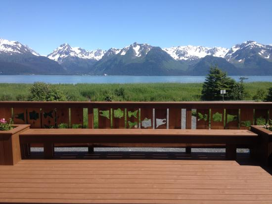 Alaska Paddle Inn: View from the Spruce House Deck