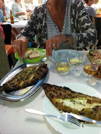 Fuseta, Portekiz: Heerlijke tong. Zo vers