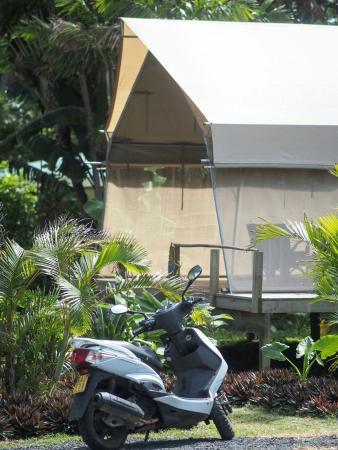 Matavera, Cookinseln: FB_IMG_1461974619681_large.jpg