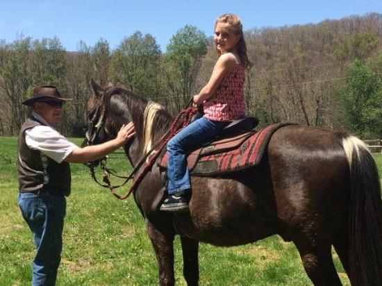 Appalachian Horse Adventures