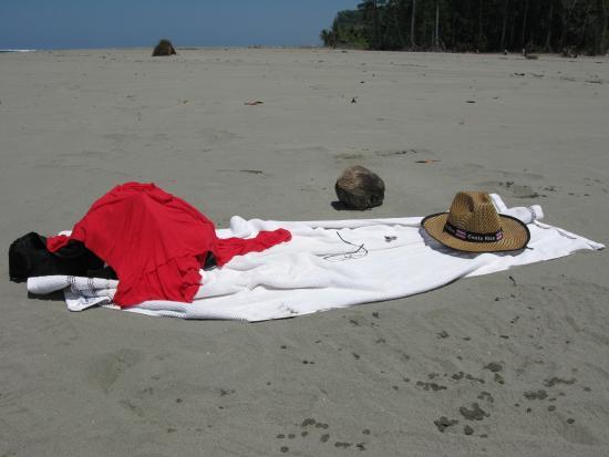 Playa Tortuga Foto
