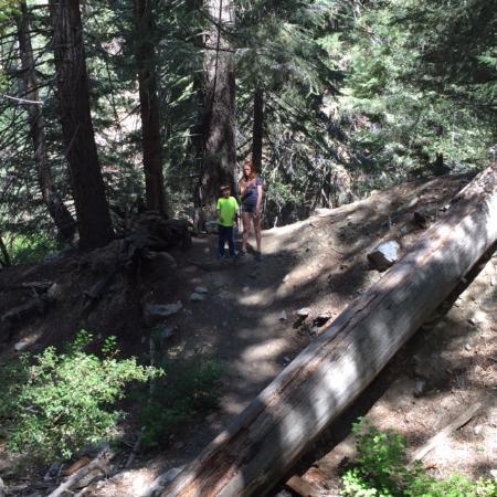 Pine Mountain Club, CA: Hiking in the area