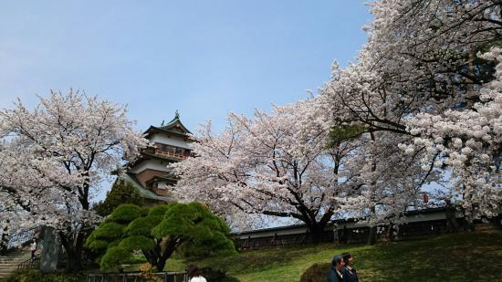 Takashima Castle: DSC_0188_large.jpg