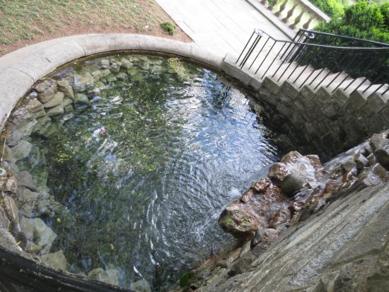 Cheekwood Botanical Gardens U0026 Museum Of Art