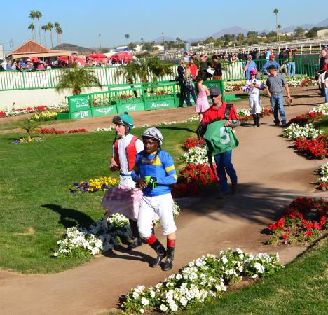 Bet Turf Paradise Horse Racing