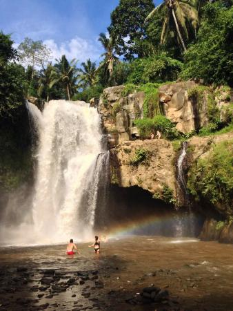 Payangan, Endonezya: Ubud waterfall / dewamadesang9@gmail.com