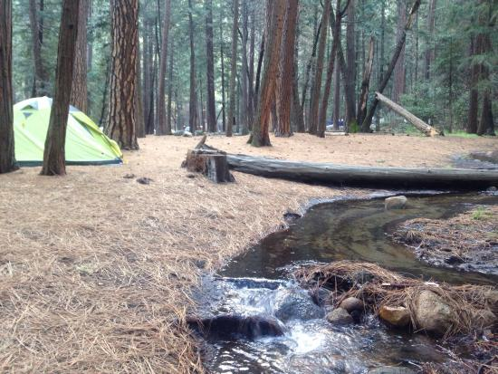 Upper Pines Campground 이미지