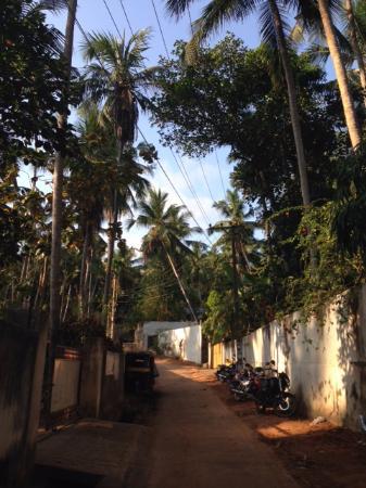 Hotel Sea Breeze: Street outside hotel