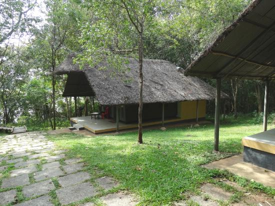 Kabini River Lodge Tents with basic amenities . & Tents with basic amenities ... - Picture of Kabini River Lodge ...
