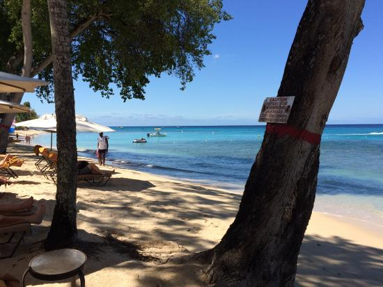 Paynes Bay, Barbados: Beach to rear of hotel